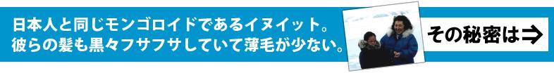 日本人と同じモンゴロイドであるイヌイット。彼らの髪も黒々フサフサしていて薄毛が少ない。その秘密は?