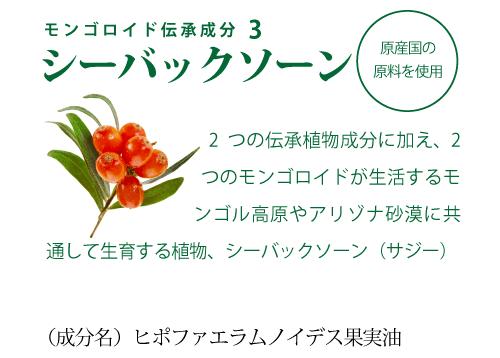 モンゴロイドの3大伝承成分:シーバックソーン