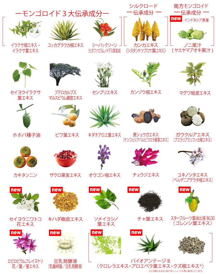 天然植物成分を26種類配合