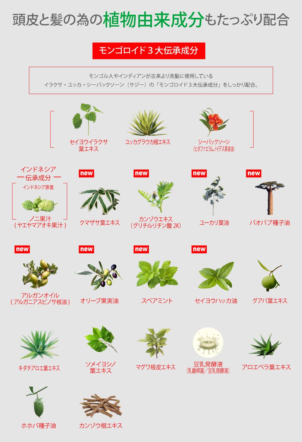 頭皮と髪のための植物由来成分もたっぷり配合