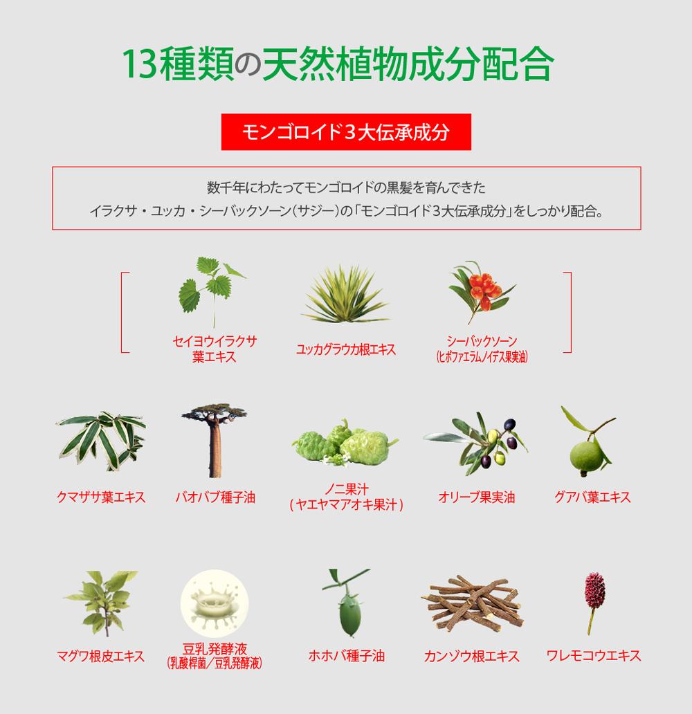 天然植物由来成分