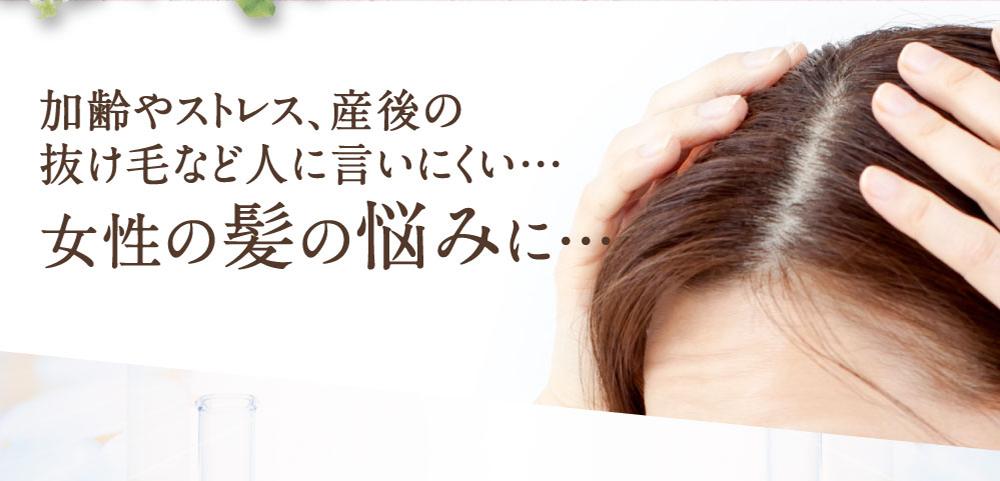加齢やストレス、産後の抜け毛など人に言いにくい…女性の髪の悩みに…