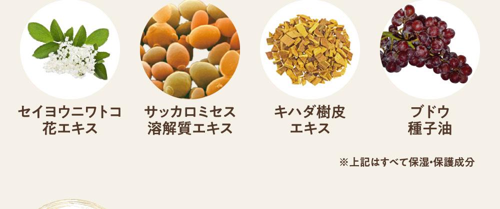 セイヨウニワトコ花エキス サッカロミセス溶解質エキス キハダ樹皮エキス ぶどう種子油