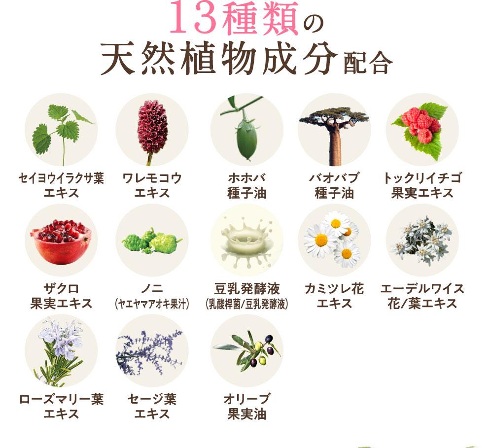 13種類の天然植物成分配合